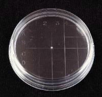 Clear Polystyrene Slippable Petri Dishes